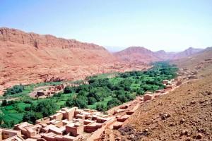 MaroccoOasi