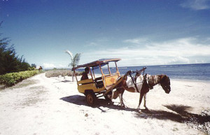 Gili Air isoletta indonesiana al largo di Lombok
