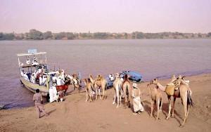 Sudan il pontone su cui i cammelli attraversano il Nilo