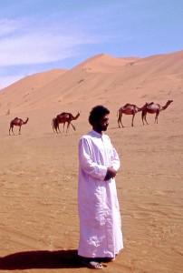 Oman, cammelli nel deserto