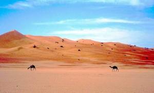 Le dune rosse di Rub Al Khali