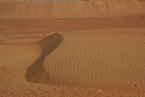 Dune nel deserto dell'Oman