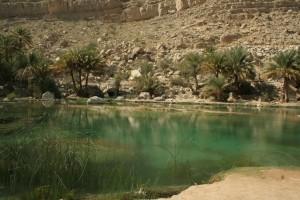 Oasi nell'Oman