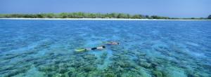 Il reef australiano