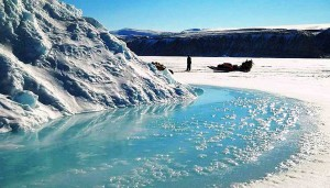 Groenlandia da vedere su slitte trainate da cani