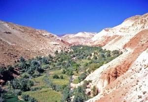 Marocco, oasi di montagna