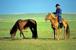 Mongolia, cavaliere