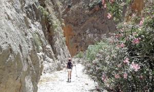 Creta, si cammina benissimo