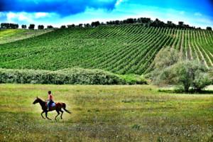 A cavallo in provincia di Grosseto