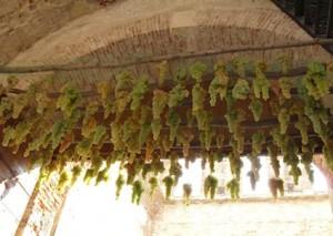Soave, le recie ovvero i grappoli appesi