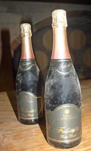 """Le bottiglie della """"Felicità"""", il vino di Al Bano"""