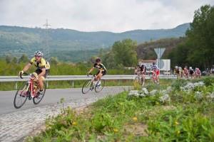 In bicicletta sulle strade dell'Istria