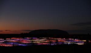 Field of Light - Uluru (Mark  Pickthall)