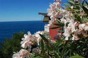 Liguria, La Francesca Resort a Bonassola