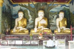 Birmania, un fedele prega davanti alle statue di Budda