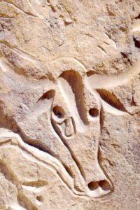 Algeria scultura rupestre